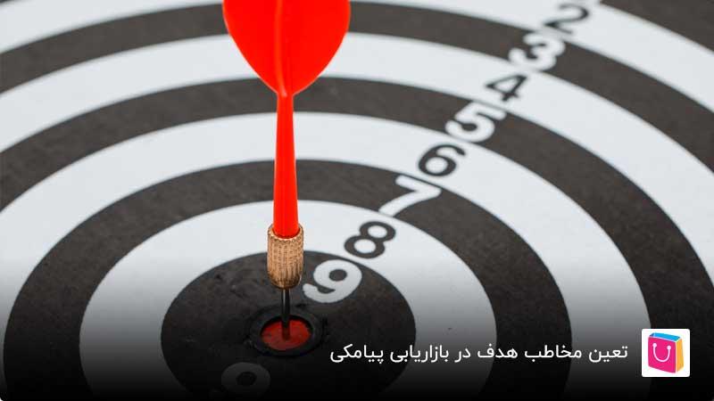 مخاطب هدف در بازاریابی پیامکی چه کسانی هستند؟